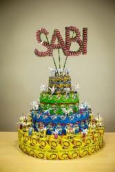 MS-Brusnica-Kolborce-SABI-torta