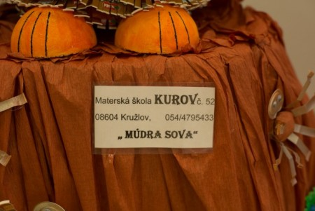 MS-Kurov-Kruzlov-Mudra-sova4)